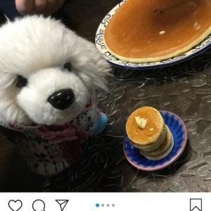 サニーちゃんのオーブンベイクドおやつ