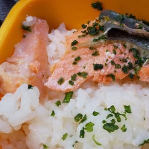 サニーちゃんの手作りご飯(11)
