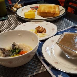 サニーちゃんの遊び、全力の『おやつ探し』と5/26の朝食