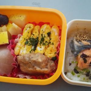 Sunny day♡ワンコ弁当持ってピクニックしよう!