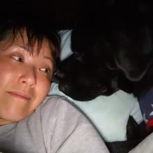 犬の睡眠の考え方『腕白サニーちゃんの場合』