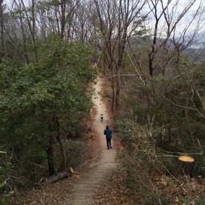サニーちゃんの新山トレイル続き
