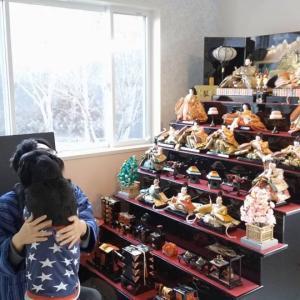 サニーちゃん、14キロ雛祭りと丹波屋さん