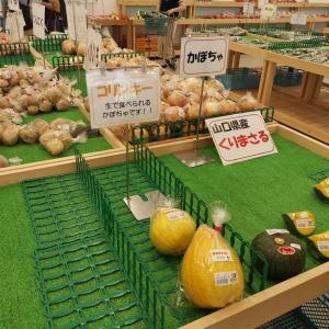 またまた珍しい食べ物発見☆JA山口県 山口統括本部