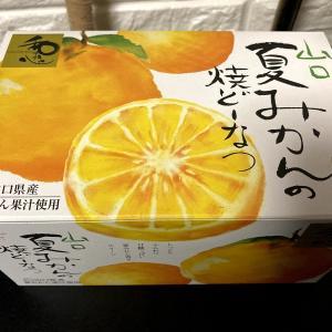 今月2度目☆最近食べたスイーツ達(´ω`*)