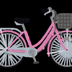 """「見たことない光景でびっくり」自転車が""""国道真ん中""""を悠々と走行!!"""