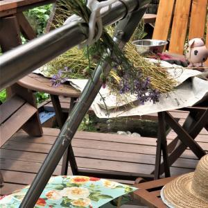 梅雨の晴れ間の庭仕事