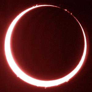 今月の「新月」は「夏至」であり「金環日食」の日です