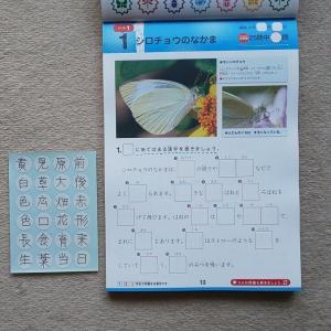 子どもの好きな昆虫を学習への動機付けに使う