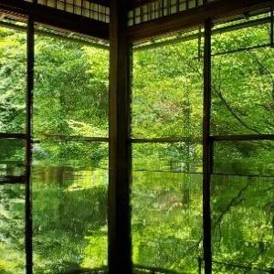 【旅人サイファの絶景100選】京都・瑠璃光院の床みどりに鳥肌が止まらない!見どころ解説!