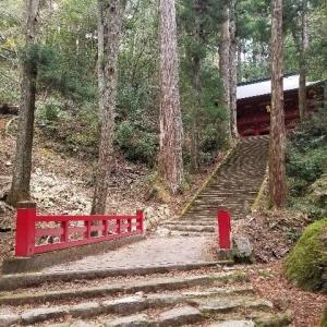【旅人サイファの絶景100選】鳳来寺山の古道は熊野古道に匹敵!