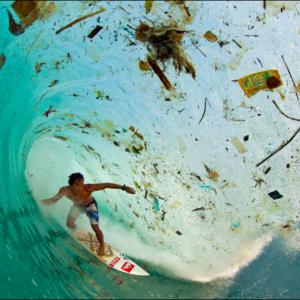 Covid  Waste その使い捨てマスクが惹き起こす海洋汚染