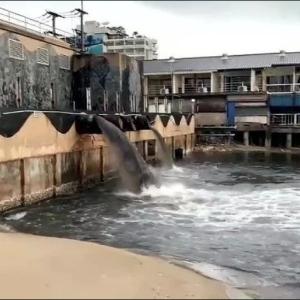 パタヤ・ナクルア地区のアミューズメント施設 排水の海岸への放出を謝罪