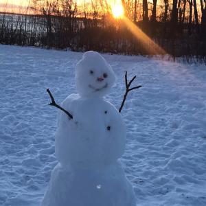 雪の彫刻特集のご紹介❣️
