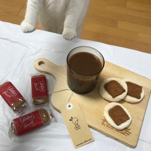 ロータスを使ったマシュマロクッキー美味しそうニャン!