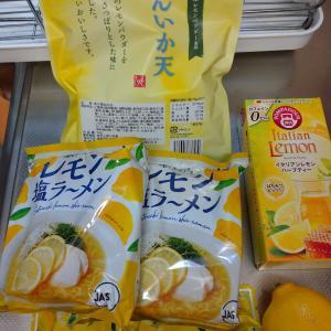 6/24  レモンな気分