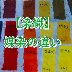 【媒染液】植物染料と媒染液で作る色
