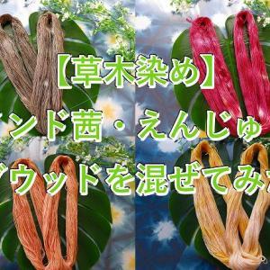 【草木染】 えんじゅ・ログウッド・あかねを混ぜて作れる色