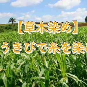 【植物染め】サトウキビ(ウージ)染めのやり方