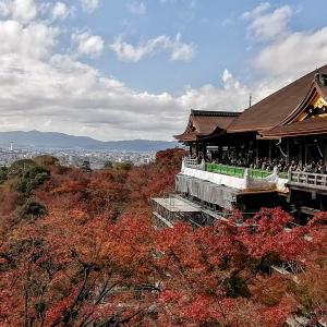 京都一周トレイル 東山コース