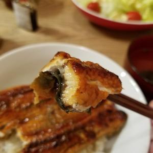 【おうちごはんで老舗の味】侮るなかれ、中国産うなぎの絶品調理方法はコレだ!【胃全摘は食べすぎ・油分に注意!】