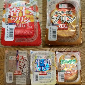 【絶品こんにゃくスイーツ】群馬県こんにゃくパークの『こんにゃくデザートBIGシリーズ』5つを食べ比べてみた。
