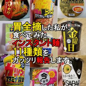 胃全摘1年~1年4か月の私が食べてみたインスタント麺を11種類報告します。【後編】