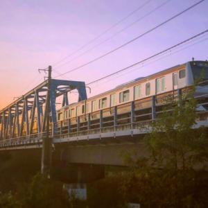 【限界企画】【行先不明】関東近郊のJR東日本全駅でさいころの旅してみた。超過酷な遊びを紹介!