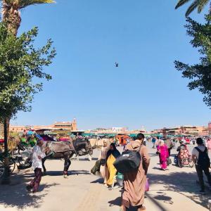 モロッコ初日!マラケシュへの移動