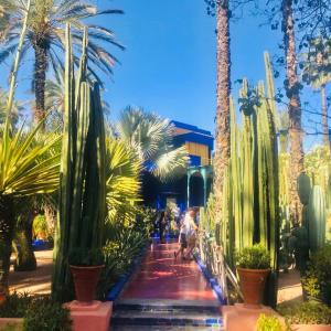 マジョレル庭園と新市街散歩