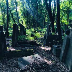 墓地と歴史博物館!ワルシャワのユダヤ人の歴史を辿る