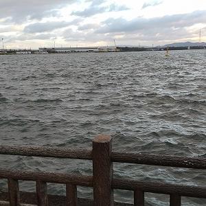 釣りのち蓮町公園