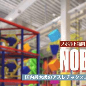 【国内最大級】ノボルト福岡を遊び尽くそう!スポーツとエンタメの屋内型アスレチック