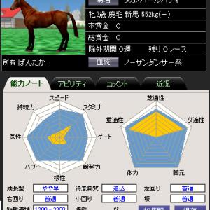 女帝イベントの馬パラ
