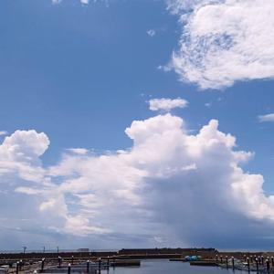 4連休最終日も雨でした。 7月26日
