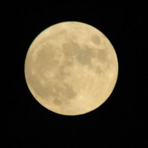8月の満月:スタージャンムーン(Sturgeon Moon) 8月3日 August 3