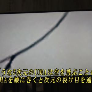 ★Vol.76.空を飛ぶ5次元のUMA(これは次元転移ベルト)! Fist of the world! The five-dimensional UMA flying in the sky (Dimension transfer belt)!