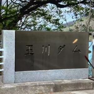 ☆玉川ダムで黄龍様を捉えた! (Vol.65)