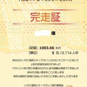 【祝第5位!】いわて盛岡シティマラソンの感想と2020年10月の月間走行距離☆20201130