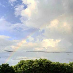 虹がでたよ。