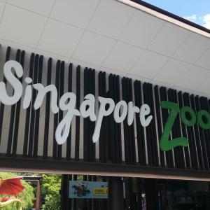 シンガポール/シンガポール動物園~開かれた展示と世界一秀逸な看板~