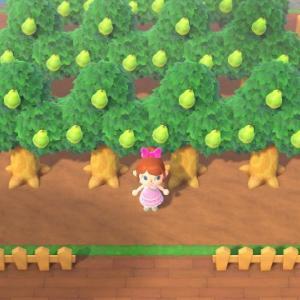 【あつ森】果樹園を作りました