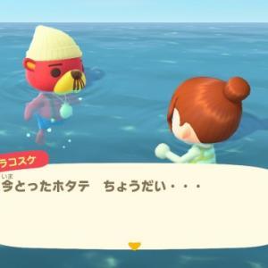 【あつ森】7月アップデート「海開き」