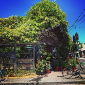 【Melbourne Cafe紹介】カフェの街メルボルンで絶対行くべきスペシャルティコーヒーショップ