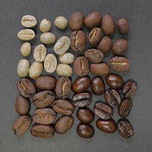 産地によって味も香りも違う!コーヒー豆の選び方