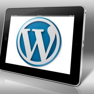 【スタードメイン】付属の無料レンタルサーバーにWordPressをインストールしテーマを設定するまでの手順