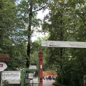 ドイツの高所アスレチックに挑戦!〜Waldklettergarten Stuttgart〜