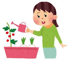 【家庭菜園】ベランダ菜園で日向ぼっこをしながら野菜の栽培・収穫を楽しもう!