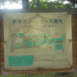 「野幌グリーンモール」国道12号線から噴水まで【北海道江別市】