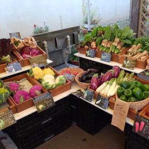 採れたて野菜が買える「ふたりのマルシェ」、今期最後10月31日はケーキ、スープ、パンとのコラボ企画あり【江別市】